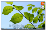WinTuning 7: Tweak and optimize Windows 7 - Hide and disable all items on the desktop